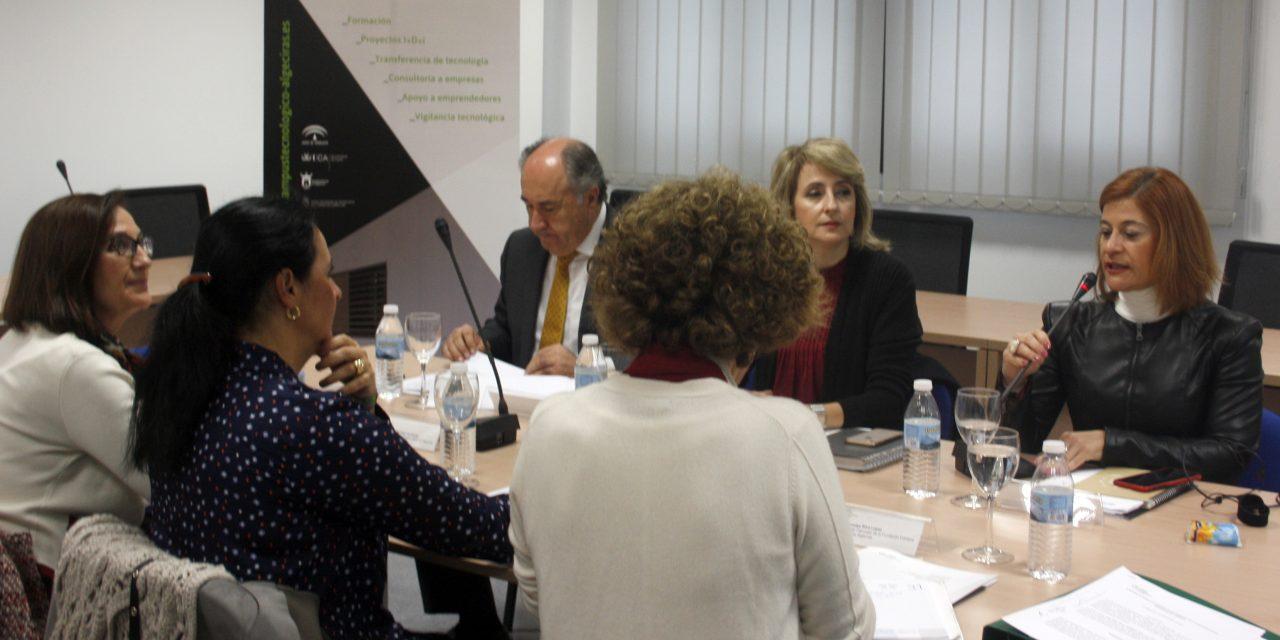 La Fundación Campus Tecnológico de Algeciras celebra su patronato
