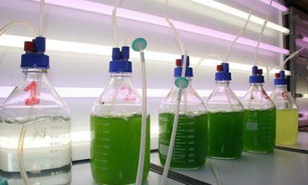 Tecnologías de microalgas, una propuesta sostenible para el tratamiento de aguas residuales industriales