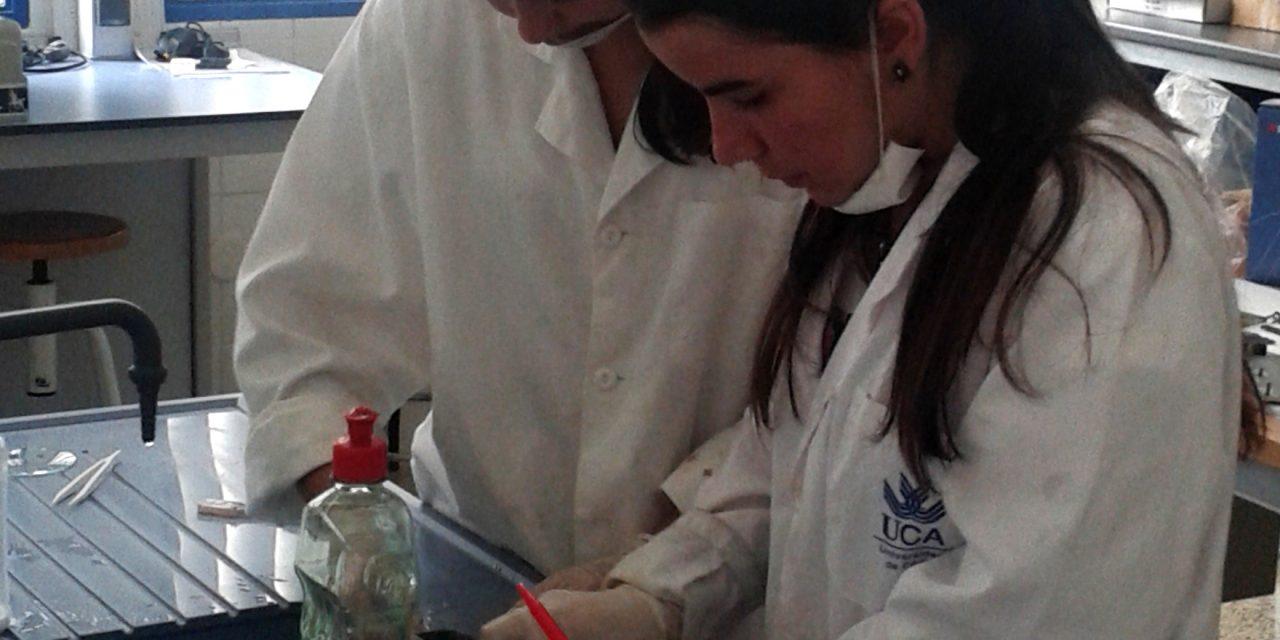 La Fundación Campus Tecnológico de Algeciras prepara una nueva edición del Campus de Verano Experiencias Investigadoras
