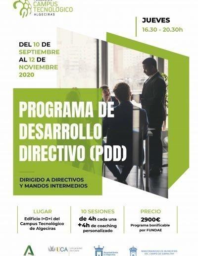 Formación PDD