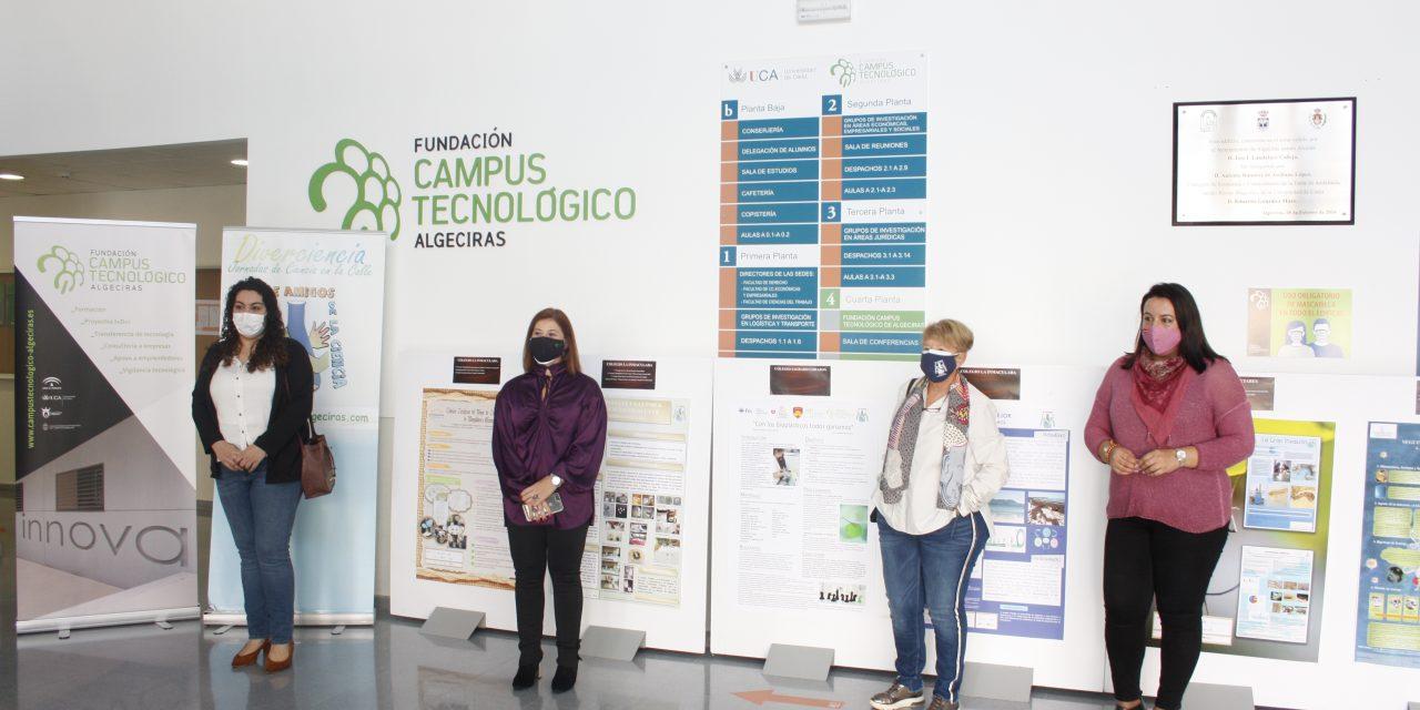 Los mejores trabajos de investigación de Diverciencia 2020 expuestos en el hall del Edificio I+D+i